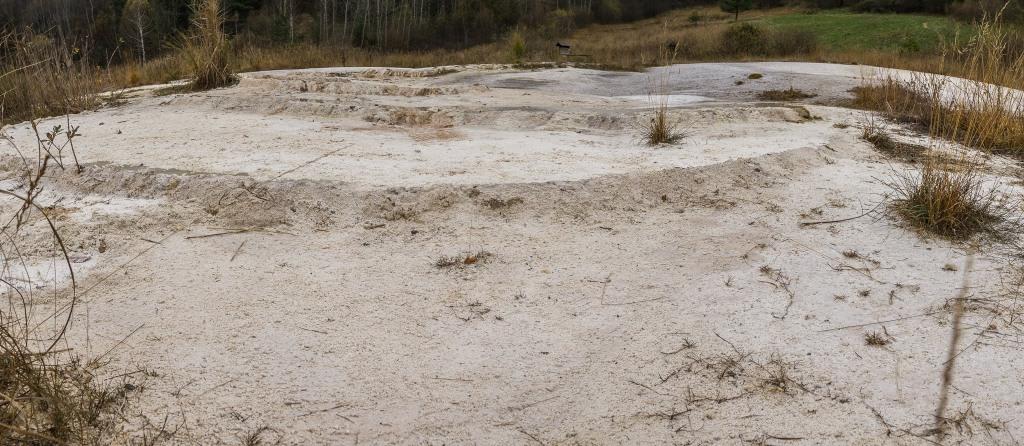 Prírodná rezervácia Močiar
